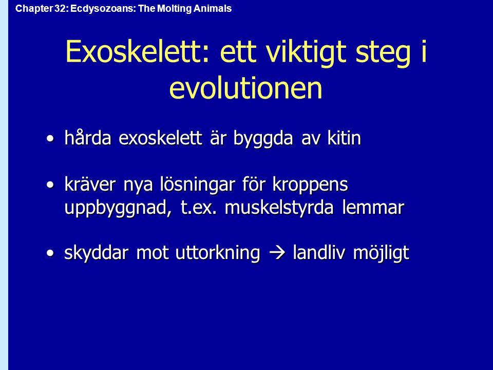 Exoskelett: ett viktigt steg i evolutionen