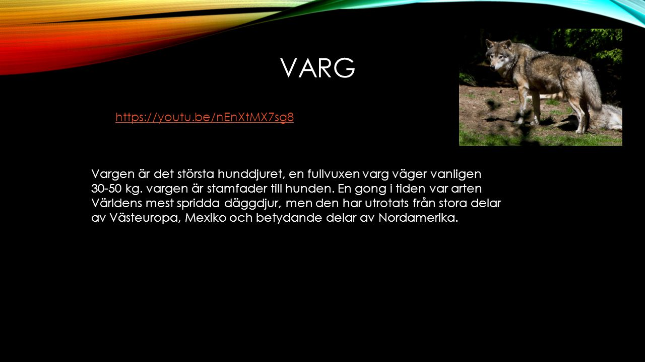 varg https://youtu.be/nEnXtMX7sg8