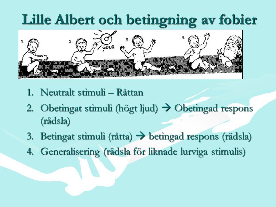 Lille Albert och betingning av fobier
