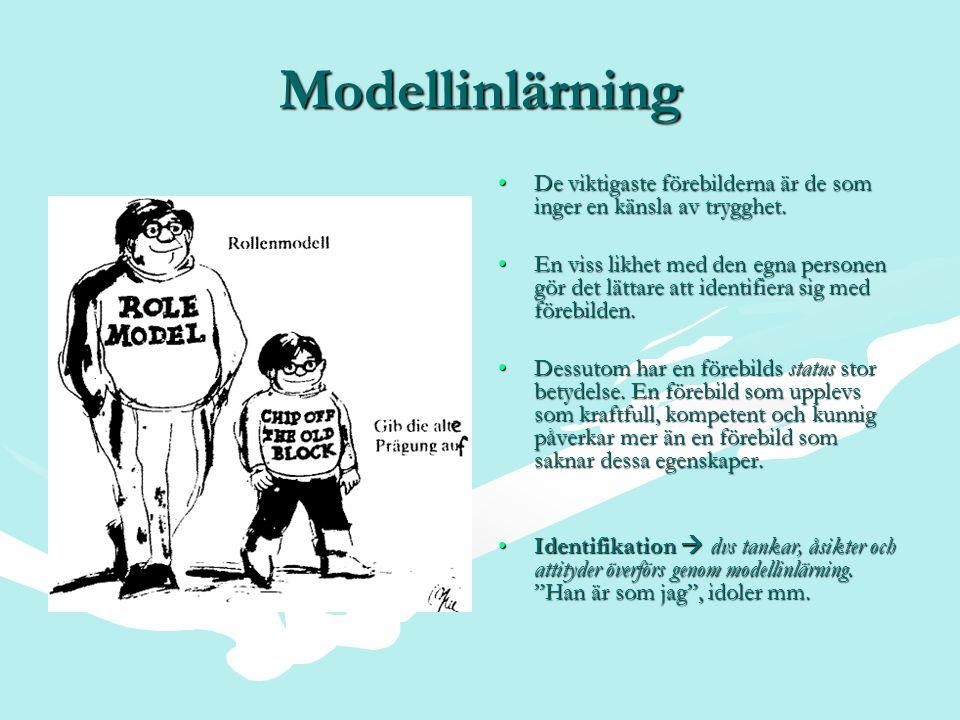 Modellinlärning De viktigaste förebilderna är de som inger en känsla av trygghet.