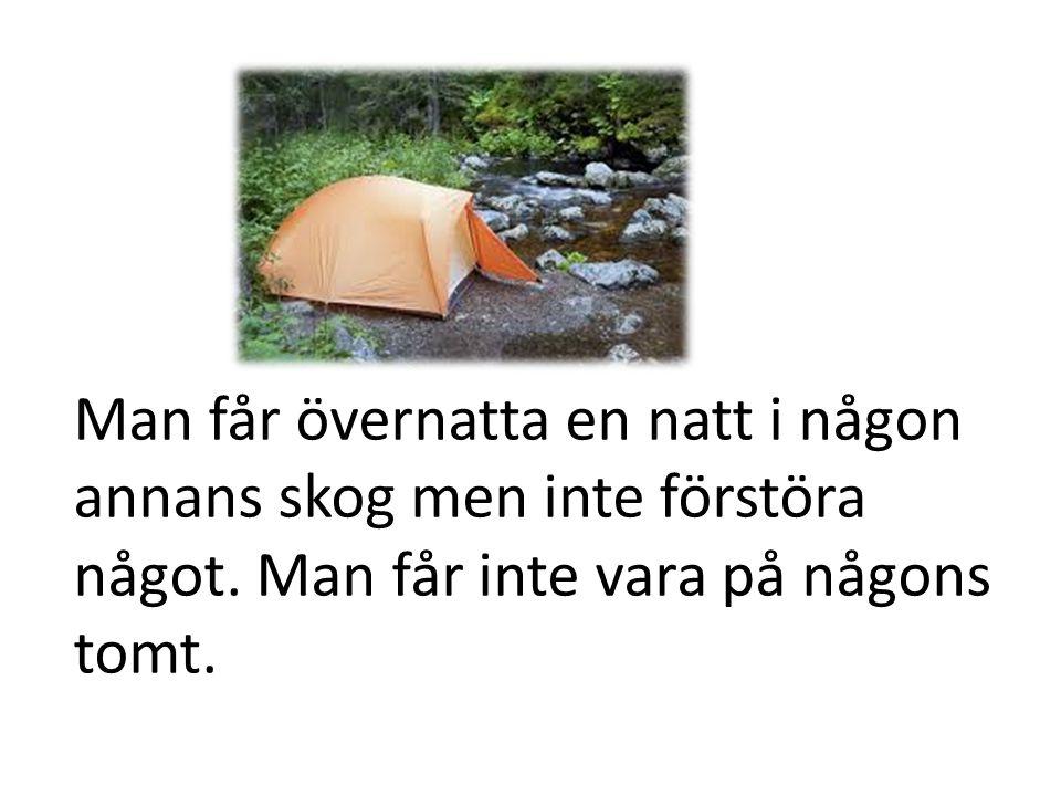 Man får övernatta en natt i någon annans skog men inte förstöra något