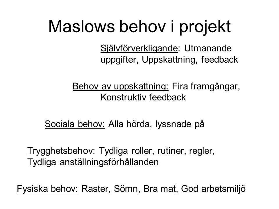 Maslows behov i projekt