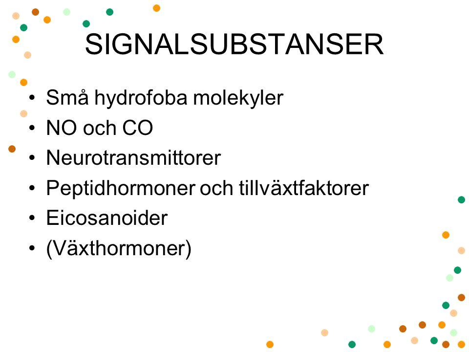 SIGNALSUBSTANSER Små hydrofoba molekyler NO och CO Neurotransmittorer