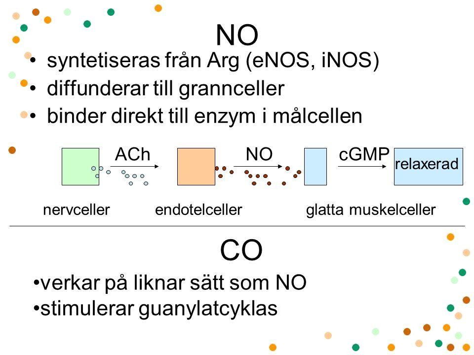 NO CO syntetiseras från Arg (eNOS, iNOS) diffunderar till grannceller