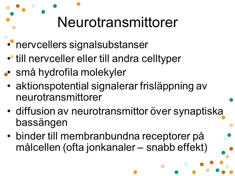 Neurotransmittorer nervcellers signalsubstanser