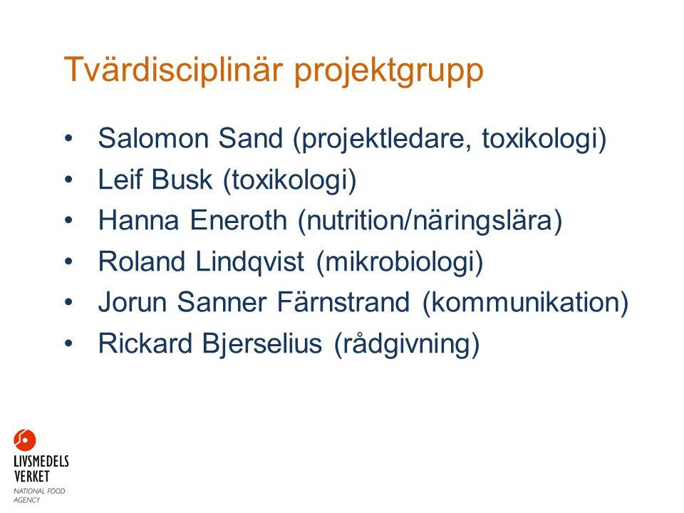 Tvärdisciplinär projektgrupp