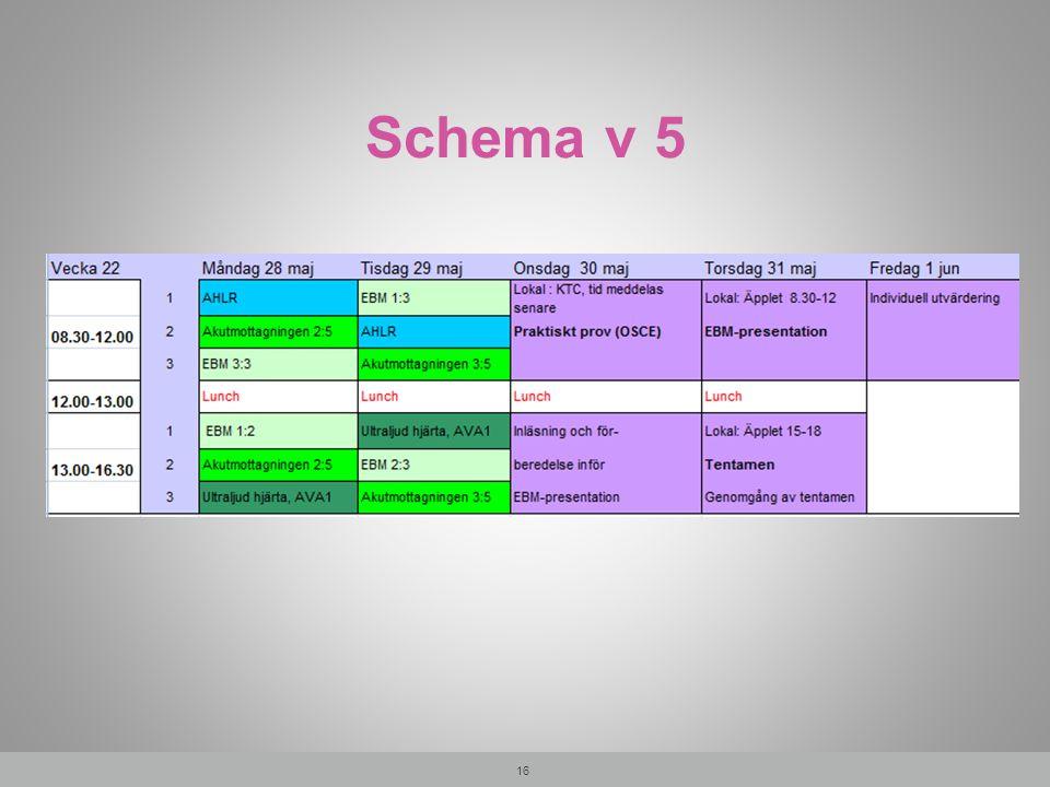 Schema v 5