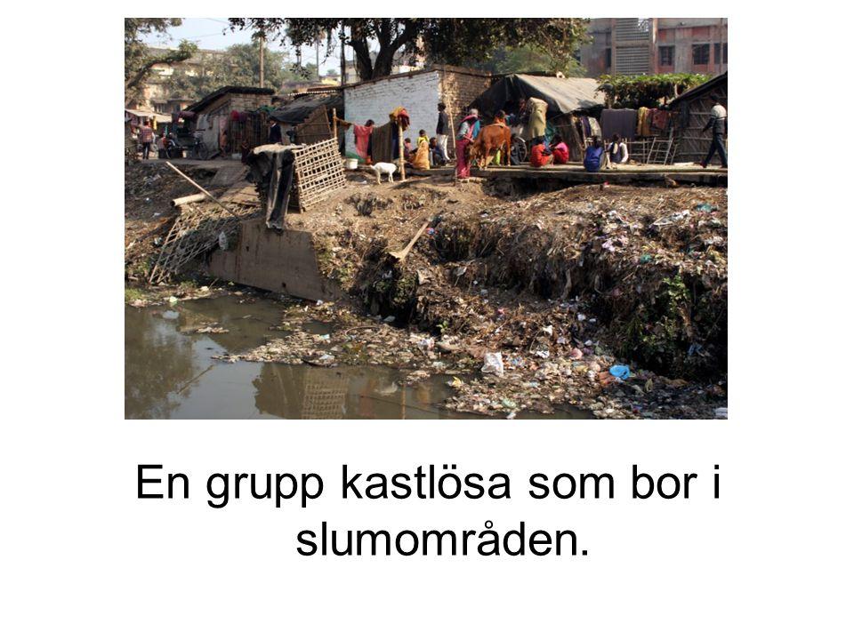 En grupp kastlösa som bor i slumområden.