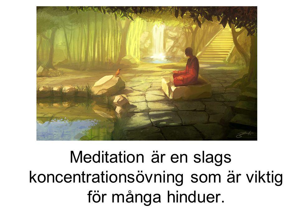 Meditation är en slags koncentrationsövning som är viktig för många hinduer.