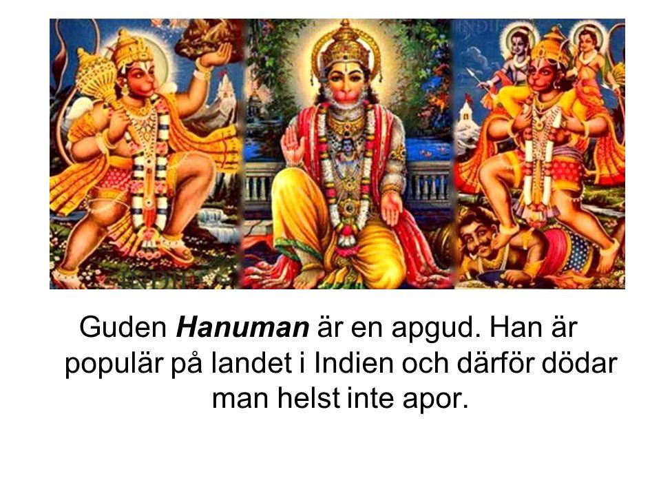 Guden Hanuman är en apgud