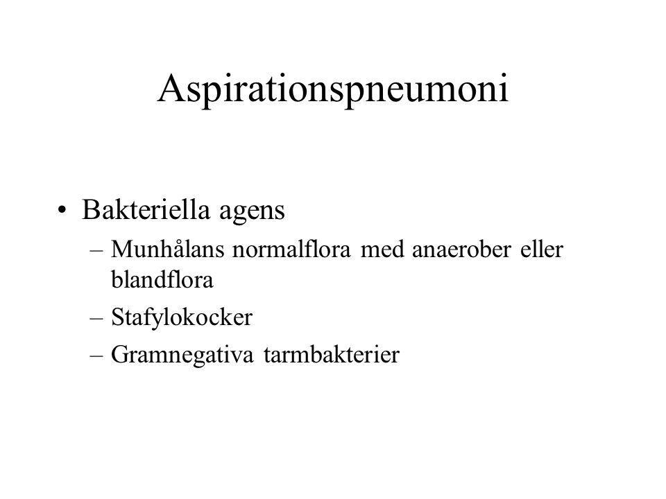 Aspirationspneumoni Bakteriella agens
