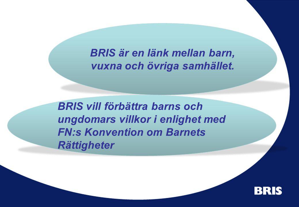 BRIS är en länk mellan barn, vuxna och övriga samhället.