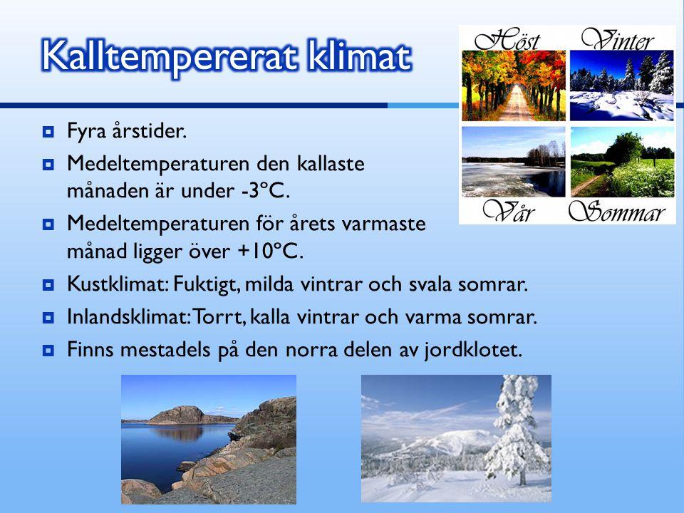 Kalltempererat klimat