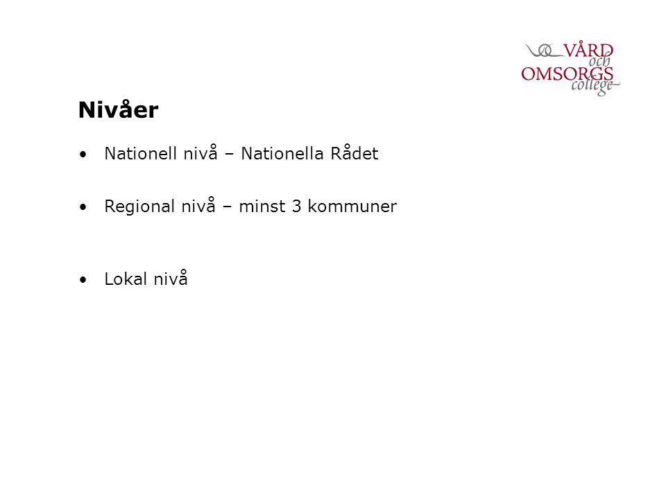 Nivåer Nationell nivå – Nationella Rådet