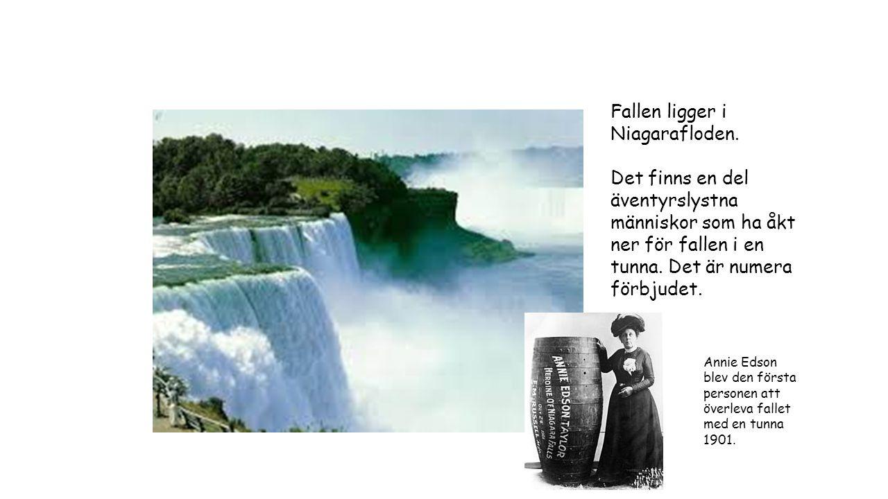 Fallen ligger i Niagarafloden.