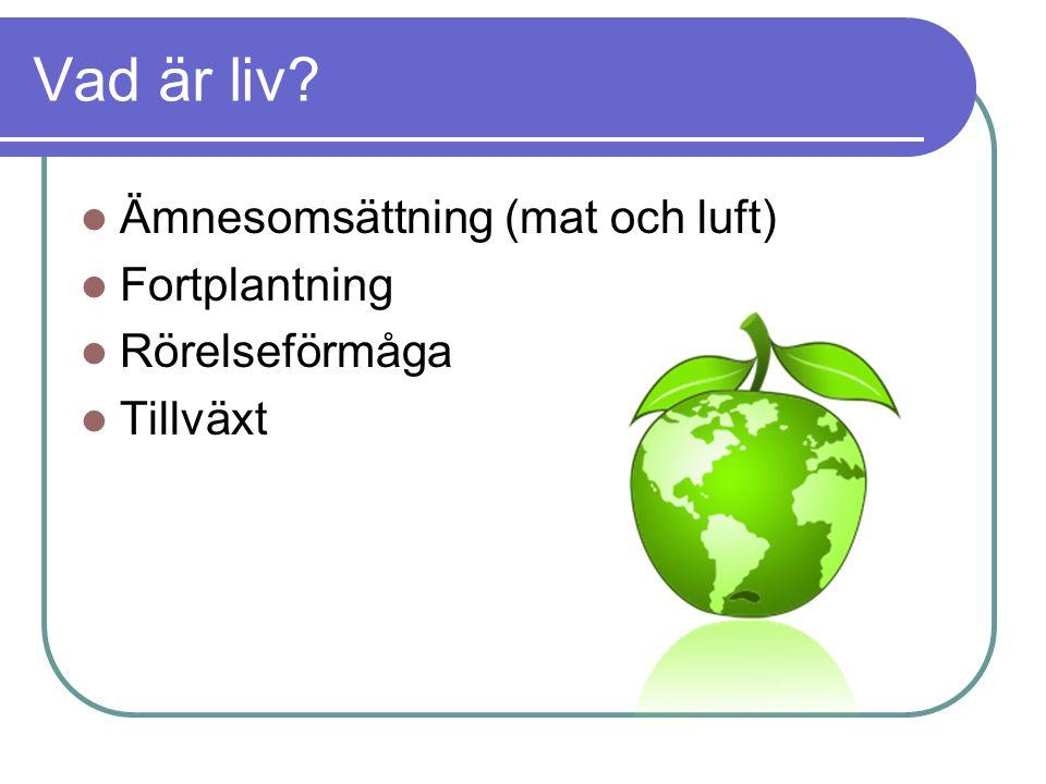 Vad är liv Ämnesomsättning (mat och luft) Fortplantning