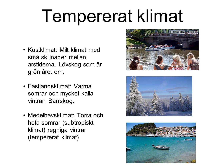 Tempererat klimat Kustklimat: Milt klimat med små skillnader mellan årstiderna. Lövskog som är grön året om.