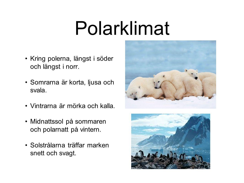 Polarklimat Kring polerna, längst i söder och längst i norr.