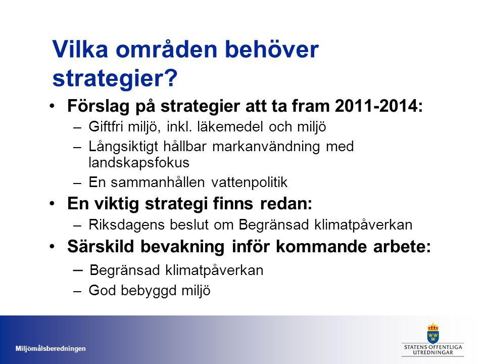 Vilka områden behöver strategier