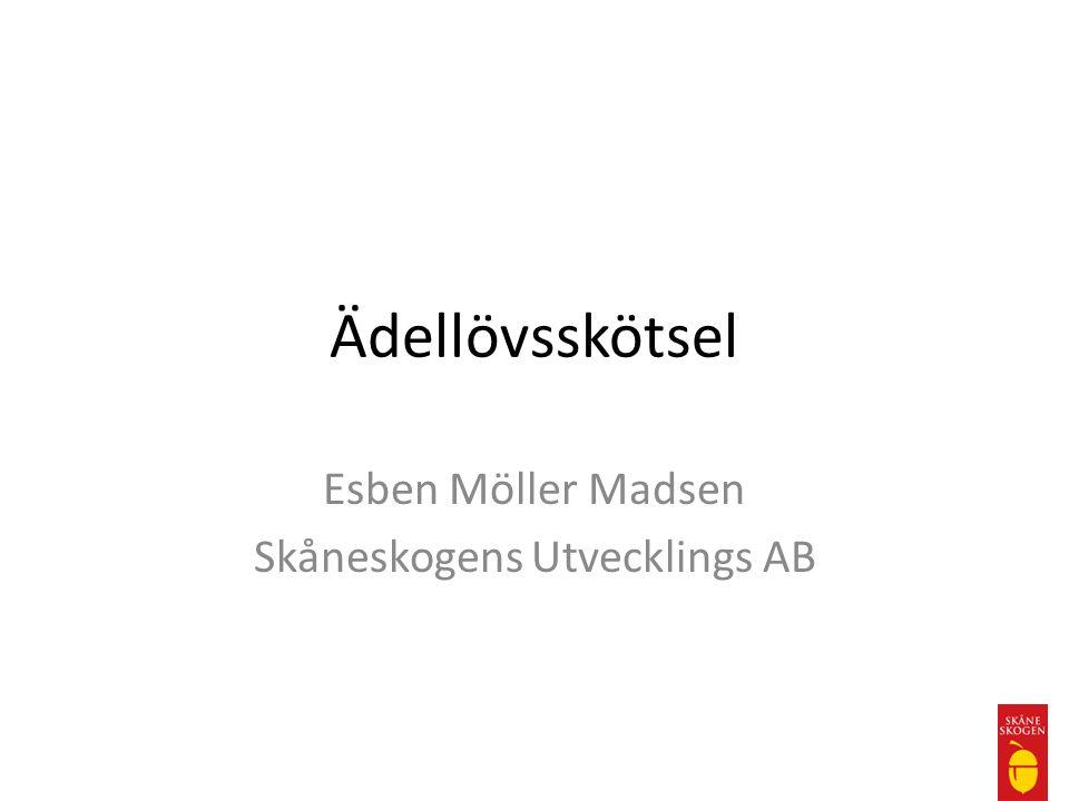 Esben Möller Madsen Skåneskogens Utvecklings AB