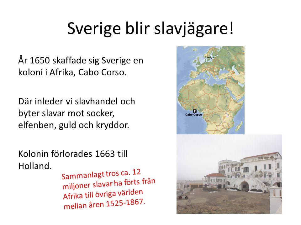 Sverige blir slavjägare!