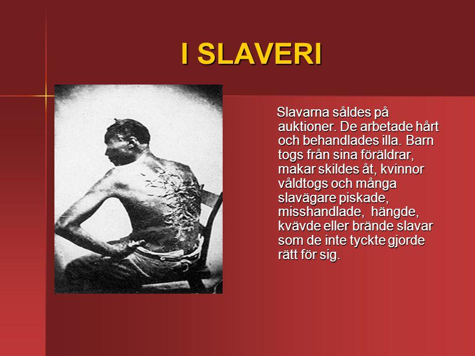 I SLAVERI