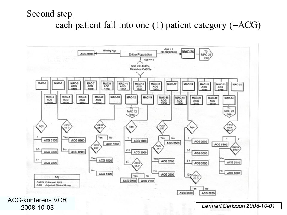 each patient fall into one (1) patient category (=ACG)