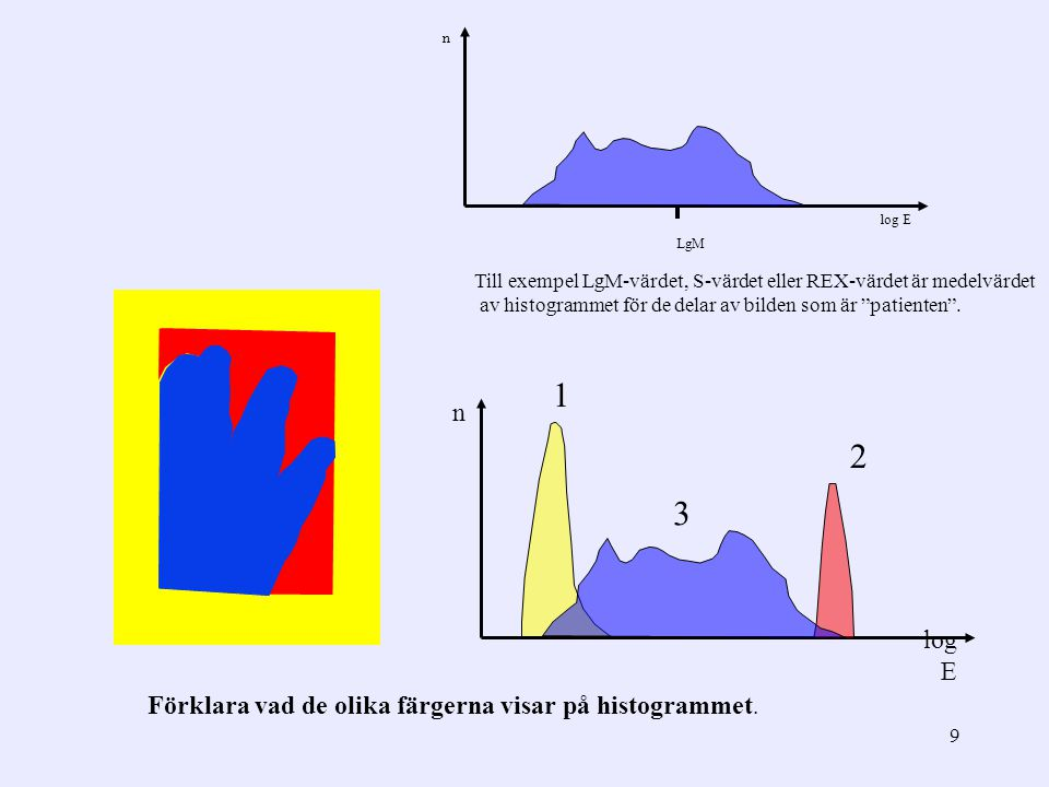 1 2 3 n log E Förklara vad de olika färgerna visar på histogrammet.