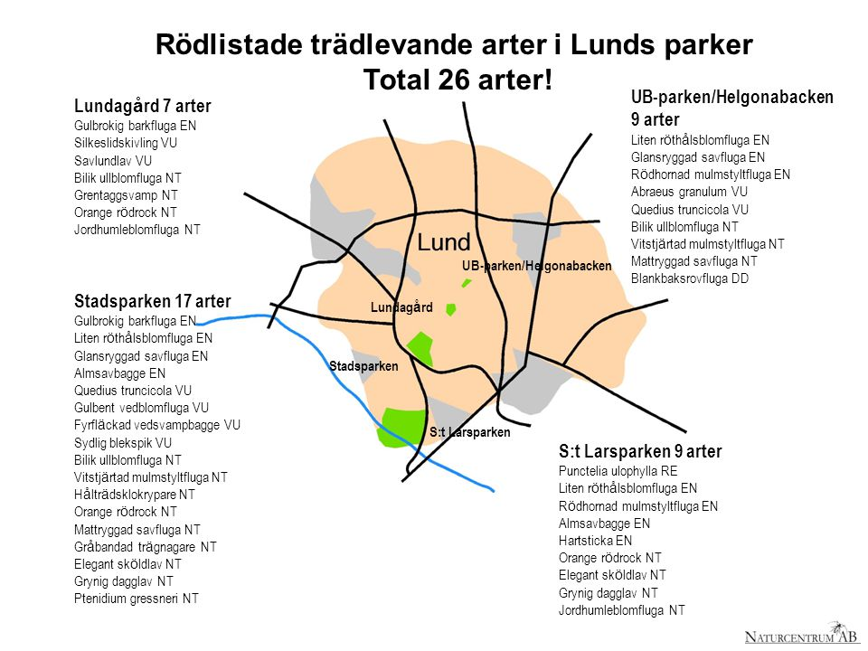 Rödlistade trädlevande arter i Lunds parker