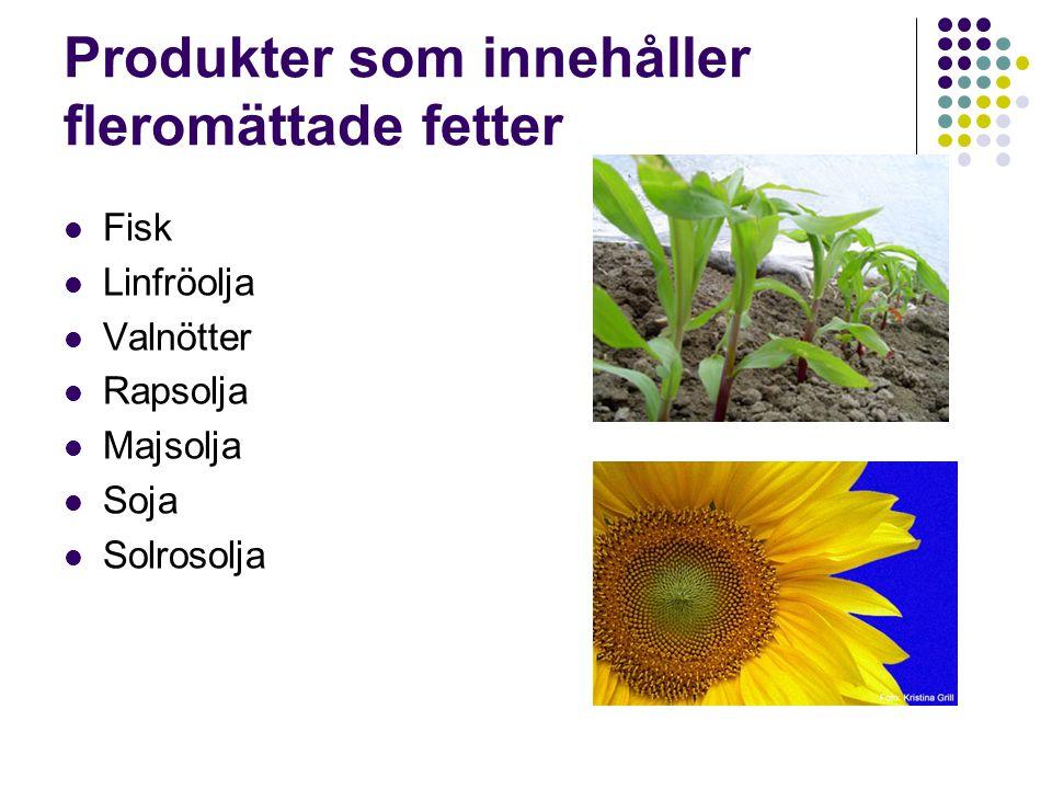 Produkter som innehåller fleromättade fetter