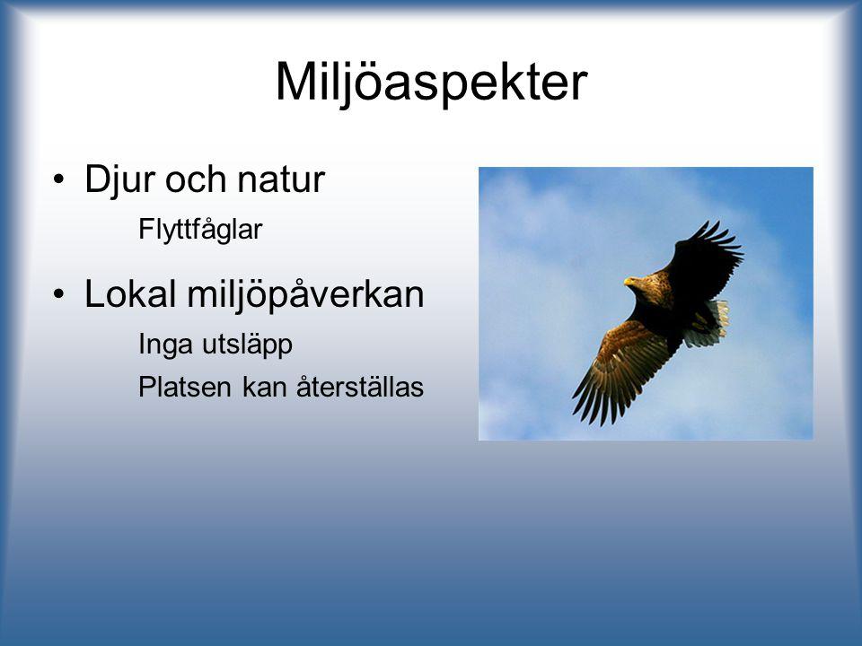 Miljöaspekter Djur och natur Flyttfåglar Lokal miljöpåverkan