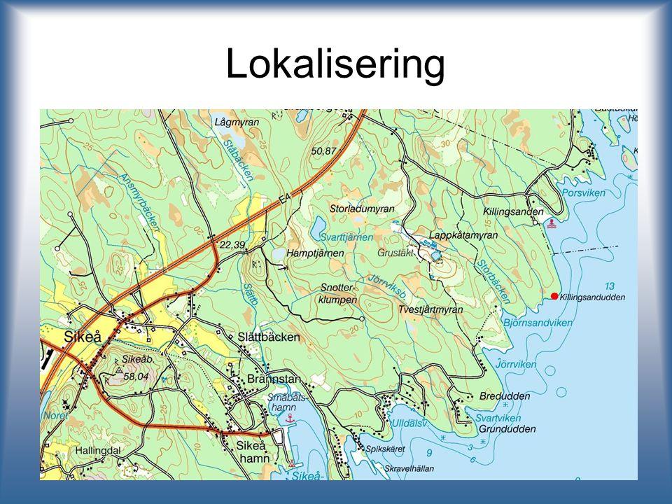 Lokalisering