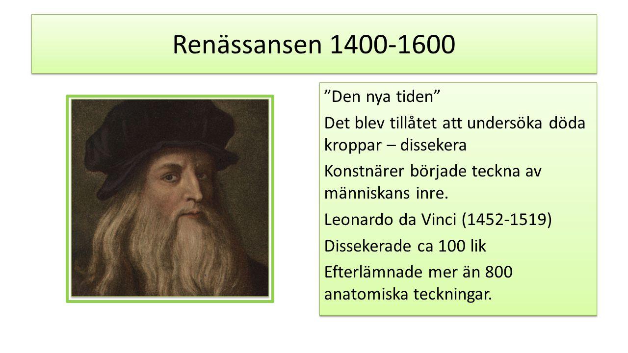Renässansen 1400-1600