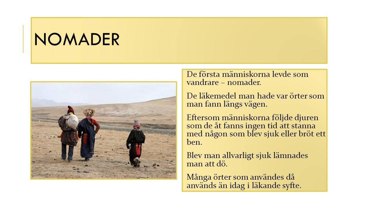 nomader De första människorna levde som vandrare – nomader.