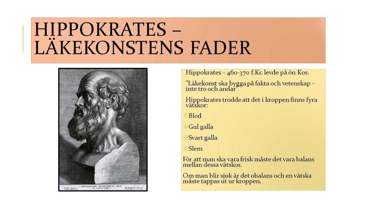 Hippokrates – läkekonstens fader