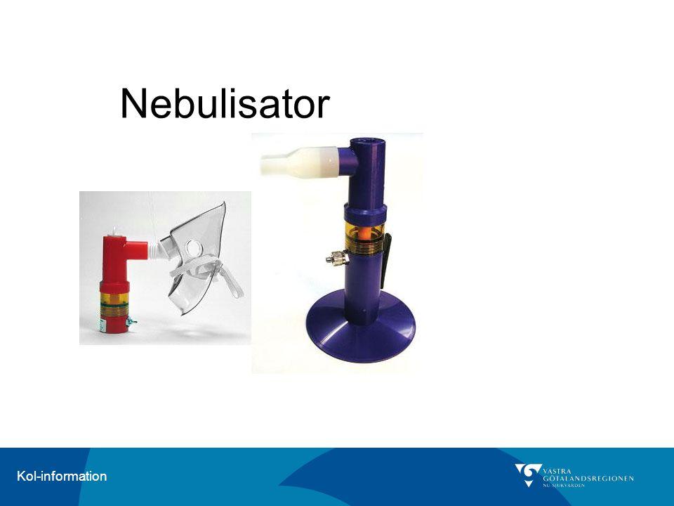 Nebulisator