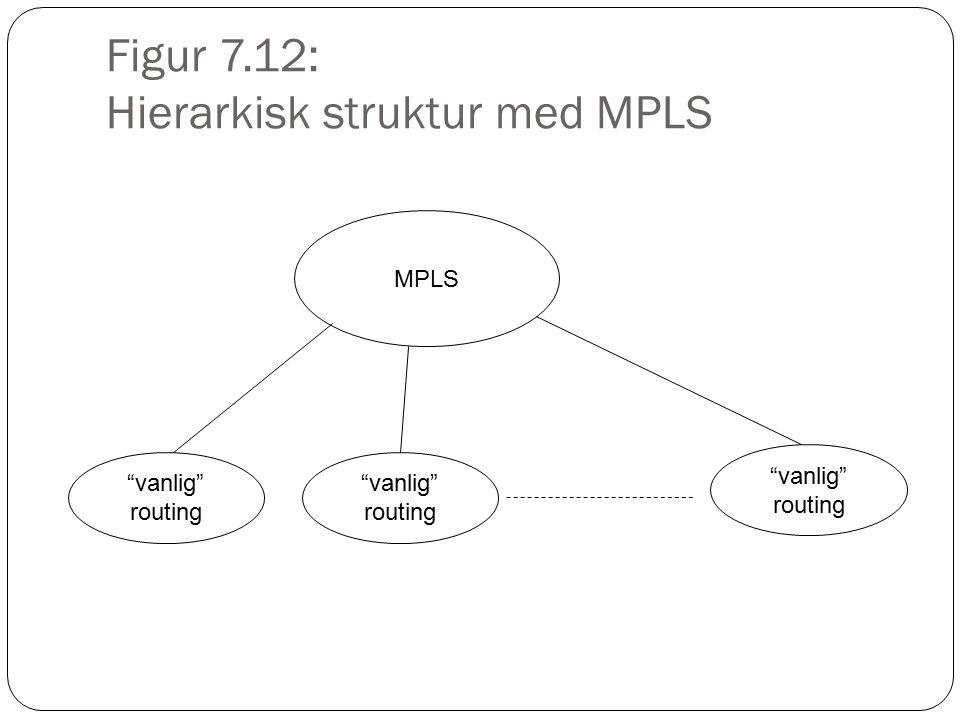 Figur 7.12: Hierarkisk struktur med MPLS