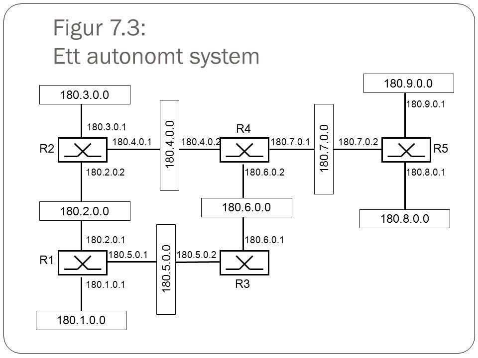 Figur 7.3: Ett autonomt system