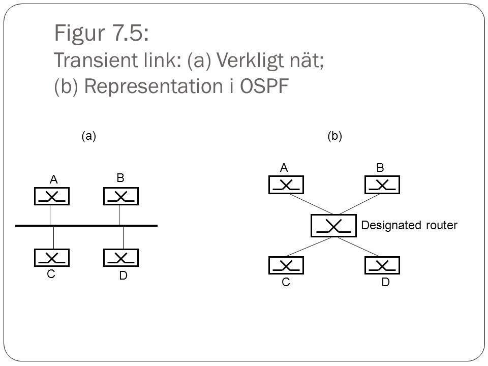 Figur 7.5: Transient link: (a) Verkligt nät; (b) Representation i OSPF