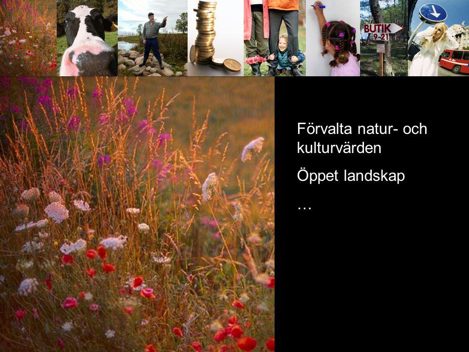 Förvalta natur- och kulturvärden Öppet landskap …