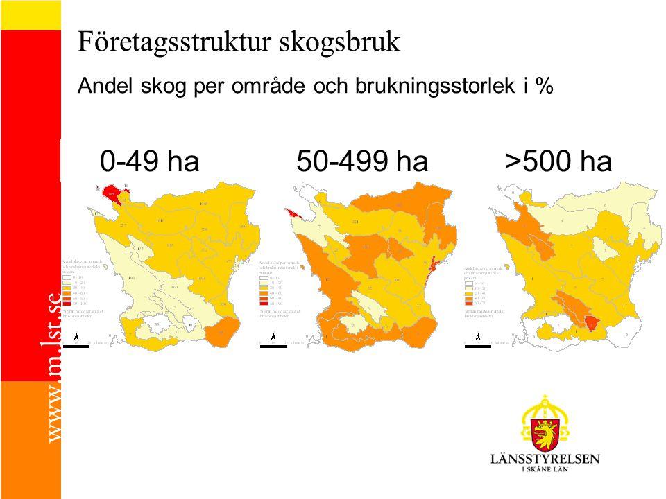 Företagsstruktur skogsbruk