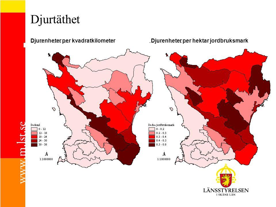 Djurtäthet Djurenheter per kvadratkilometer
