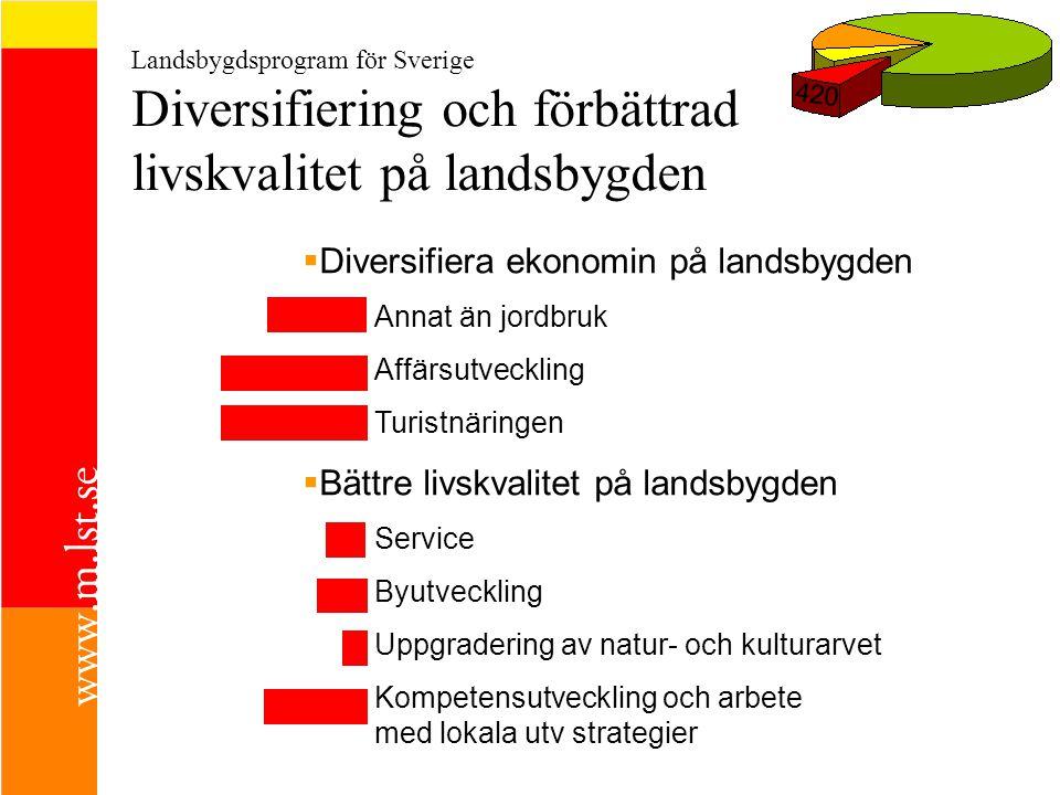 Diversifiera ekonomin på landsbygden