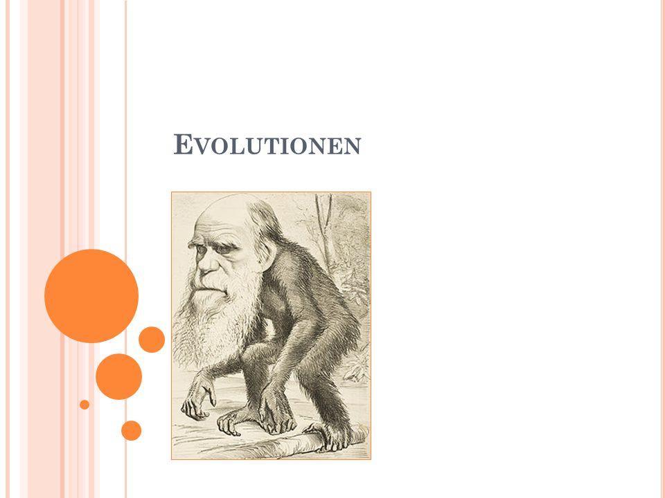 Evolutionen