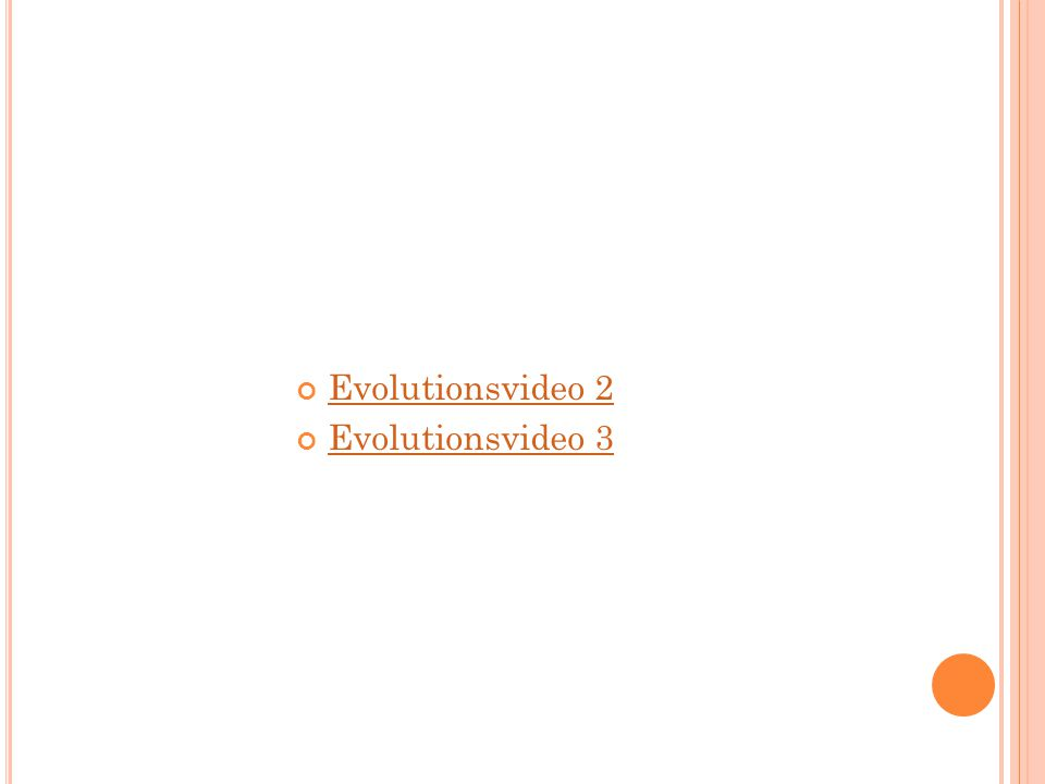 Evolutionsvideo 2 Evolutionsvideo 3