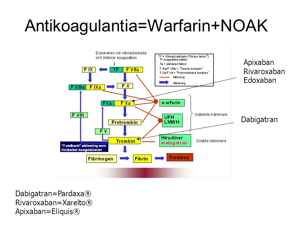 Antikoagulantia=Warfarin+NOAK