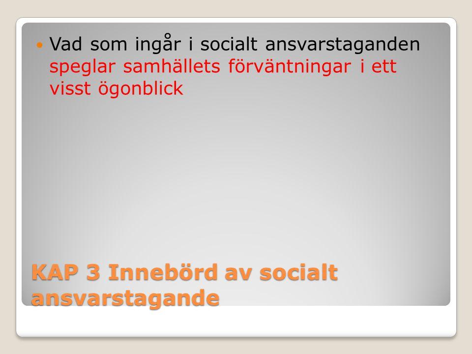 KAP 3 Innebörd av socialt ansvarstagande