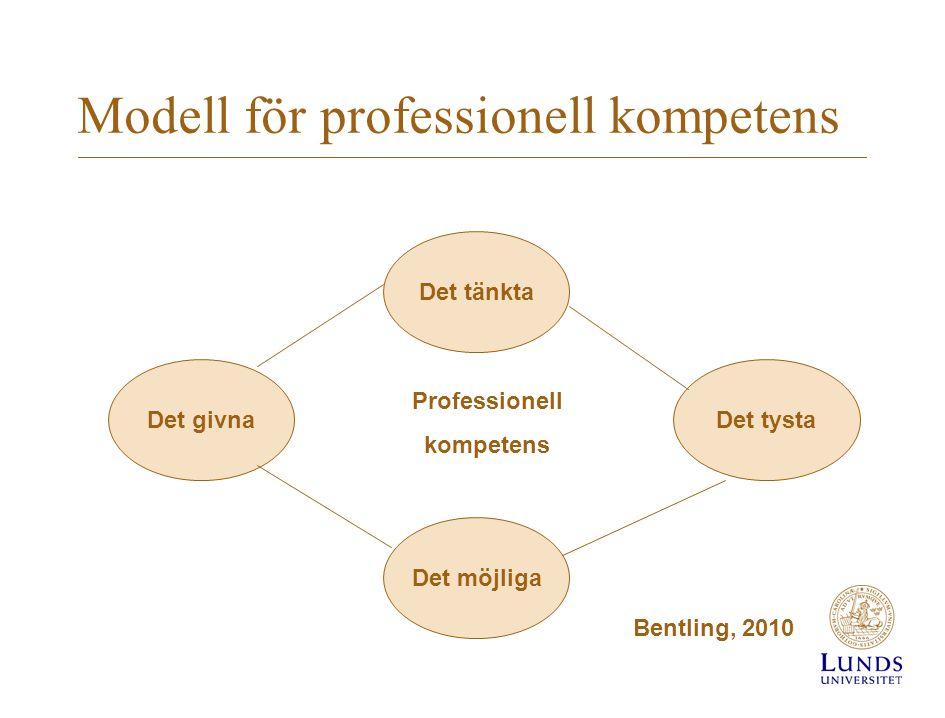 Modell för professionell kompetens