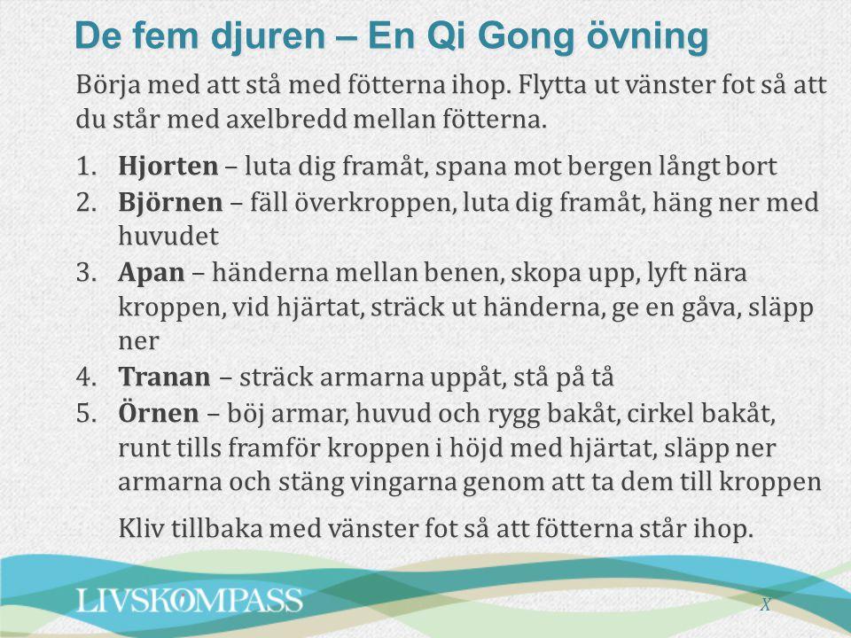 De fem djuren – En Qi Gong övning
