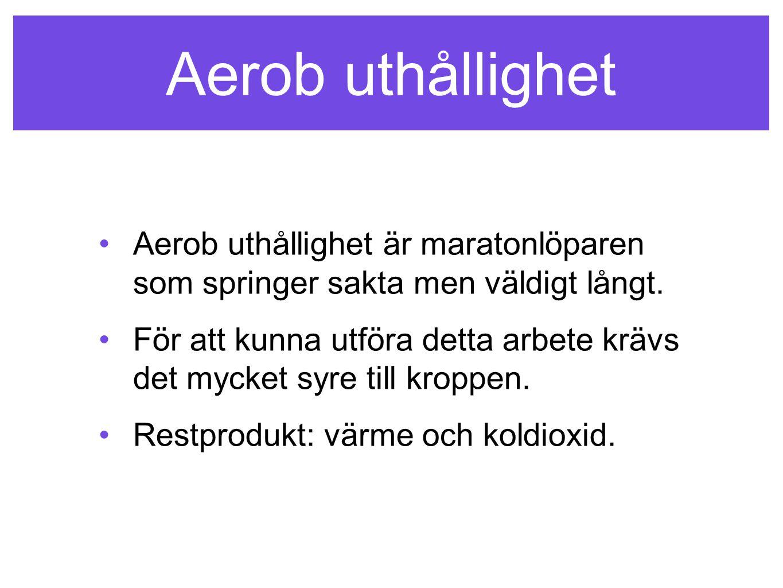 Aerob uthållighet Aerob uthållighet är maratonlöparen som springer sakta men väldigt långt.
